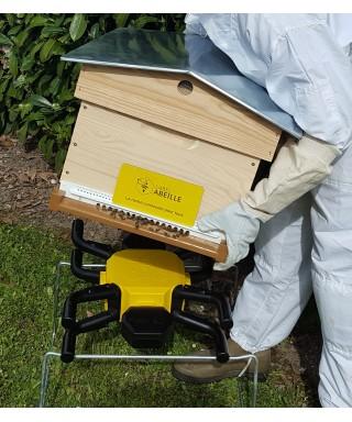 Balance label abeille