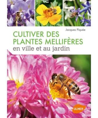 Cultiver des plantes melliferes- j piquee