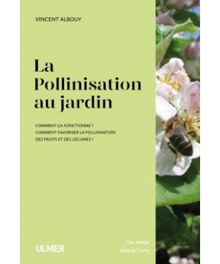 La pollinisation au jardin