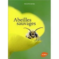 Abeille sauvages - p.boyer