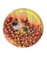 Capsule to 82 fleur jaune le sachet de 10